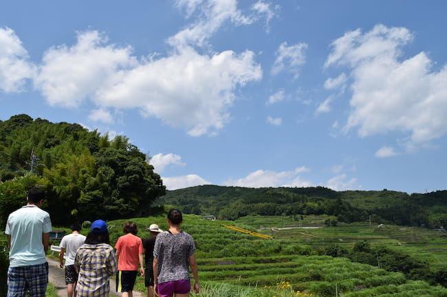 棚田の景観をたのしむ散策プログラム