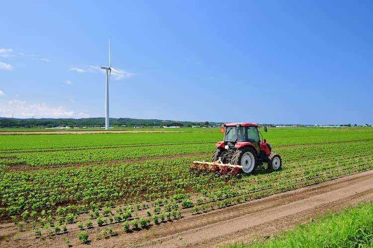中耕除草作業を省力化するには? 機械化で効率的な中間管理を実現する方法