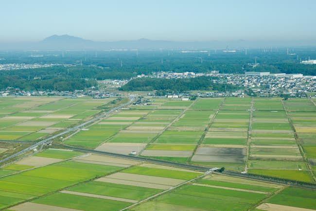 茨城県の稲作地域