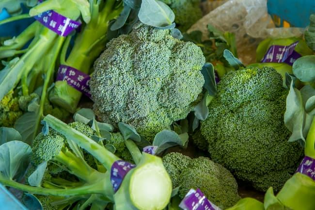 ブロッコリーの収穫・出荷