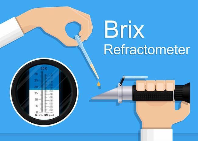 Brix値の計測