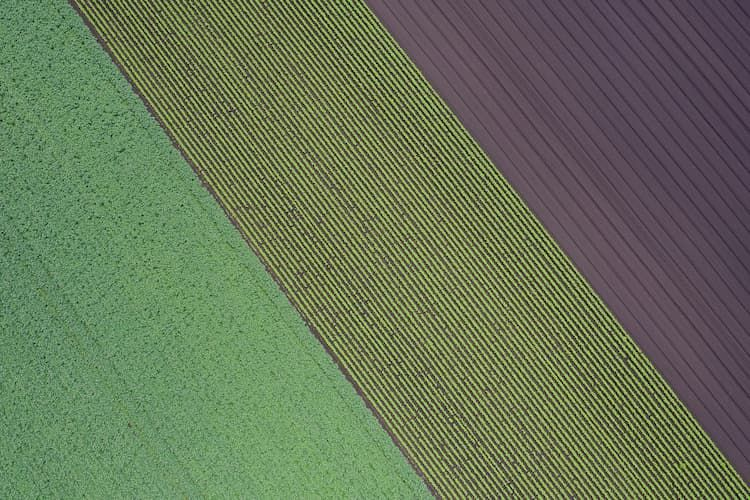 【令和版】農地法改正の歴史とは? 平成21年以降の変更をわかりやすく解説