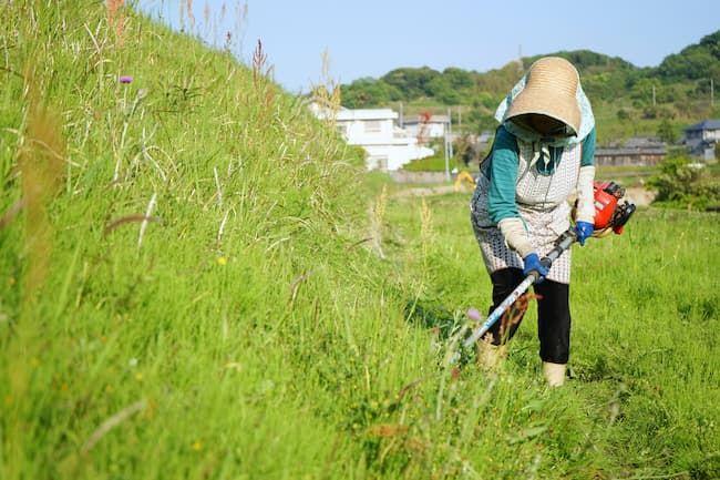 ツーグリップ式の草刈り機(刈払い機)