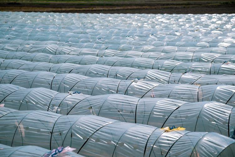 農業廃棄物の種類と正しい処分方法は?廃棄物をエネルギーに変えるバイオマス利用の可能性も解説