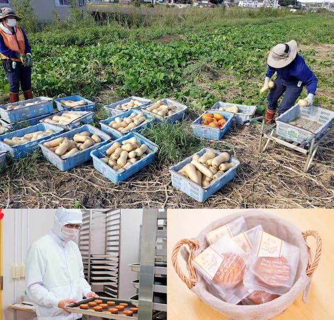 パーソルグループの特例子会社のパーソルサンクス株式会社では、地域の農家が販売・出荷できなかった作物を集め、製菓工房で加工・販売する農福連携事業を実施