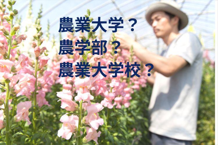 農業大学・大学の農学部と農業大学校の違いは? 農業を学びたい人の学校の選び方