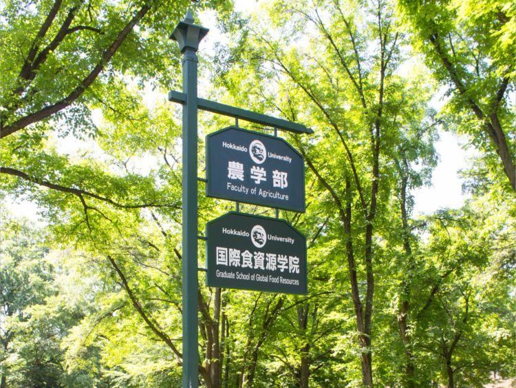北海道大学農学部の案内板