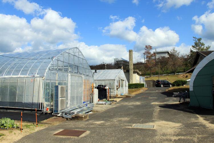 島根県立農林大学校 ICT対応ハウスを備えている