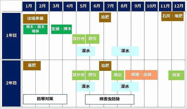 いちじくの栽培暦