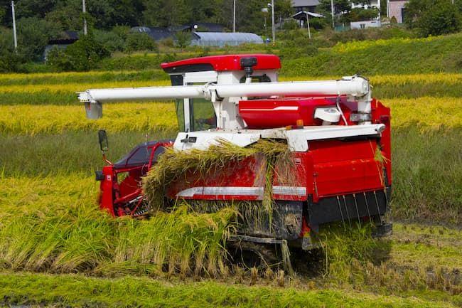 刈取った稲の穂先だけを脱穀機に通す自脱型コンバイン