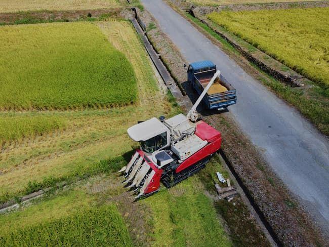 コンバインのサイズ選択には、農地の広さや形状、農道の幅などにも留意する