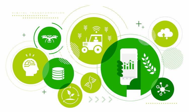 農業系スタートアップ企業紹介~事業内容から読み解く、これからの日本農業~