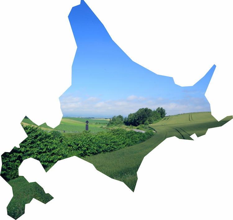 北海道の農業が抱える課題とは? 地域の特徴と、問題解決へ向けた取り組み例