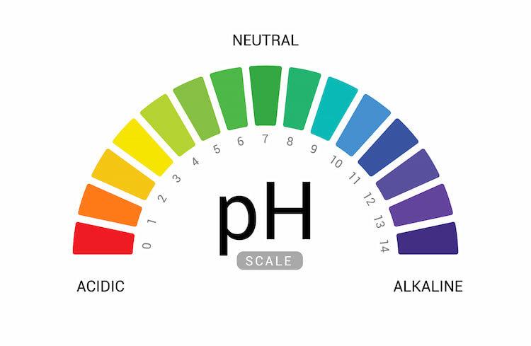 土壌のpHを効果的に上げる方法とは? EC値や養分とのバランスにも注目